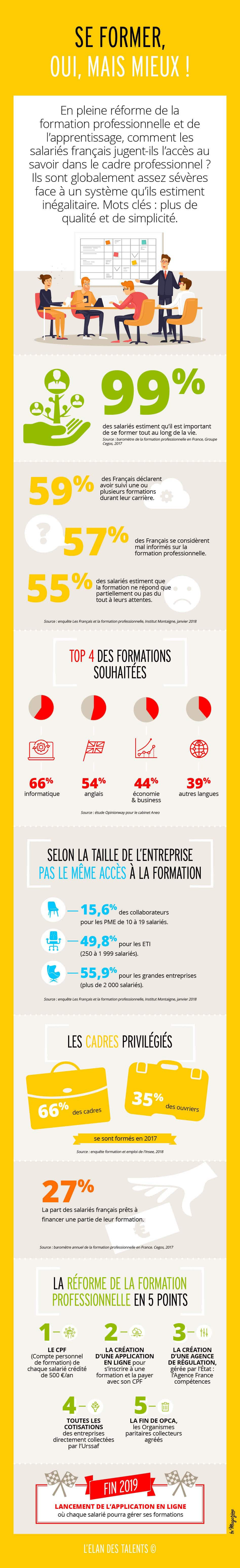 Infographie formation professionnelle