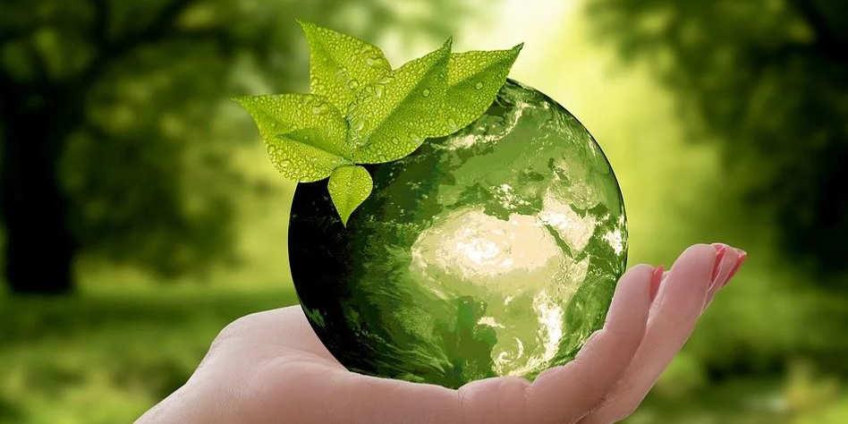 Les gestes écologiques en entreprise qui font du bien